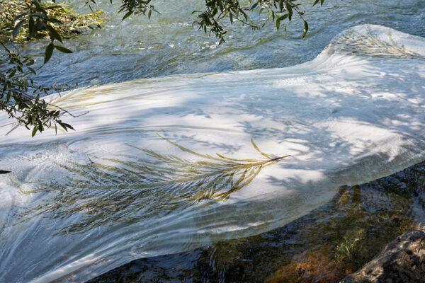 Neue Bettwäschekollektion algas marinhas ist da